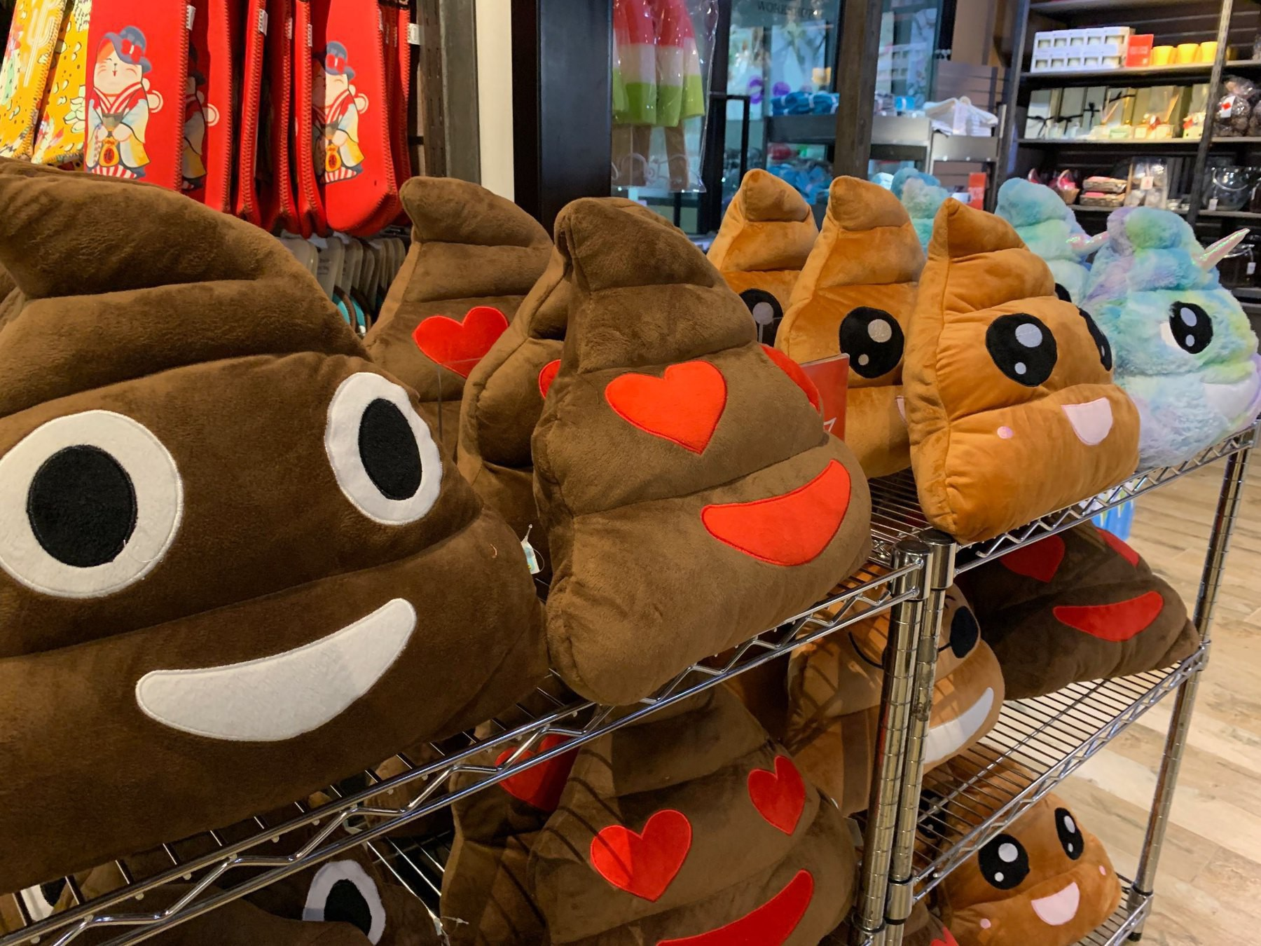 Poo shaped pillows